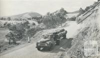 Hauling timber, Heyfield, 1958
