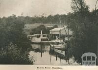 Tambo River, Mossiface, Tambo Shire, 1919