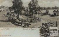 Township of Nagambie, c1909