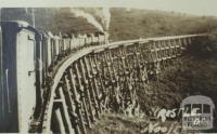 Railway trestle, Noojee