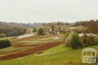 Avonsleigh, 2002