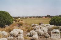 Altona Meadows from Cheetham wetlands, 2006