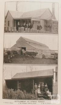 Settlement at Otway Forest
