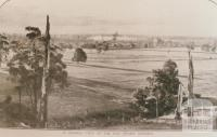 Moe swamp district, 1909
