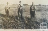 Mr J.W. Jackman's farm, Dingee, 1940