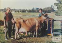 Winner 1965 Royal Show from Lyndhurst Jersey Stud, 1966