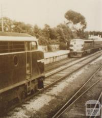 Spirit of Progress and The Daylight passing at Longwood, 1956