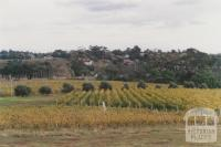 Goonawarra vineyard, looking south, Sunbury, 2010