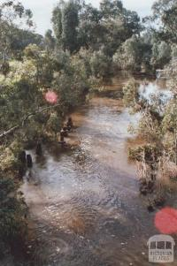 Loddon River, Newstead, 2010