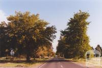 Avenue of Honour, Scarsdale, 2010
