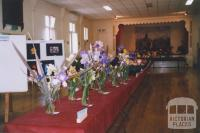 Flower Show, Mechanics Institute Hall, Skipton, 2011