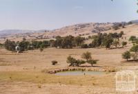 Granya, 2006