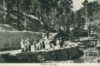 Sutton Springs, near Daylesford