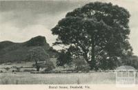Rural scene, Dunkeld, 1952