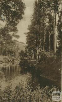 River Yarra, Fairfield