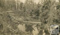 Gellibrand, 1916