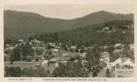 Panorama overlooking the township, Healesville