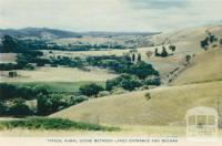 Typical rural scene between Lakes Entrance and Buchan, 1955