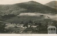 Tyrone, Marysville, 1951