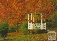 Autumn in private garden, Marysville, 1986