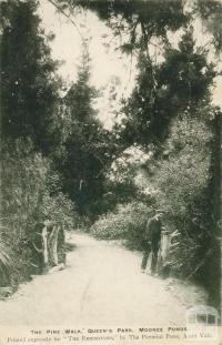 The Pine Walk, Queen's Park, Moonee Ponds, 1905