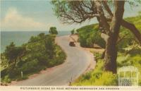 Picturesque scene on the road between Mornington and Dromana, 1951