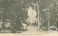 The Cross, through the trees, Mount Macedon, 1949