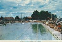 The Swimming Pool at Orbost