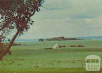 A peaceful farm scene showing Chicory Kiln on Phillip Island
