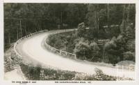 The Sassafras-Olinda Road, Sassafras, 1949