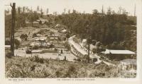 The township of Sassafras