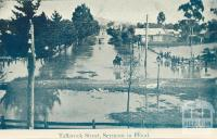 Tallarook Street, Seymour in Flood, 1908