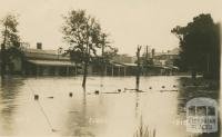 Seymour in flood, 1916