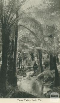 Tarra Valley Park, 1949