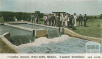Governor Carmichael and party, Irrigation Channel, White Cliffs, Mildura, c1910