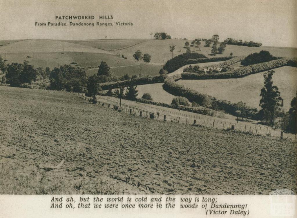 Patchwork hills, Paradise, Dandenong Ranges, 1954