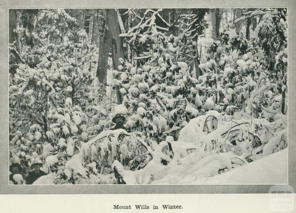 Mount Wills in Winter, 1918