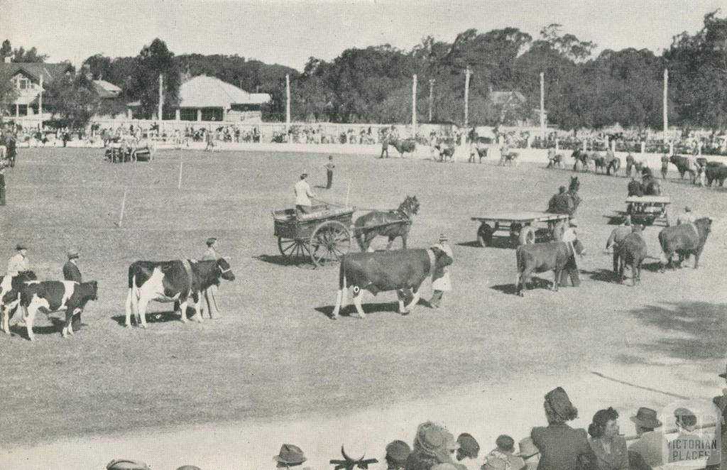 The Agricultural Society's Annual Show, Echuca, 1950