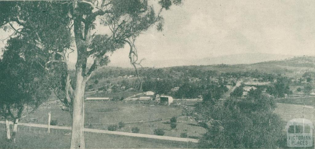 View of Alexandra, looking across the Show and Recreation Grounds
