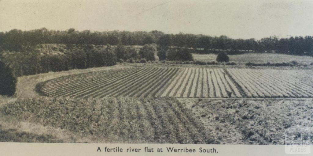 Fertile river flat, Werribee South, 1955