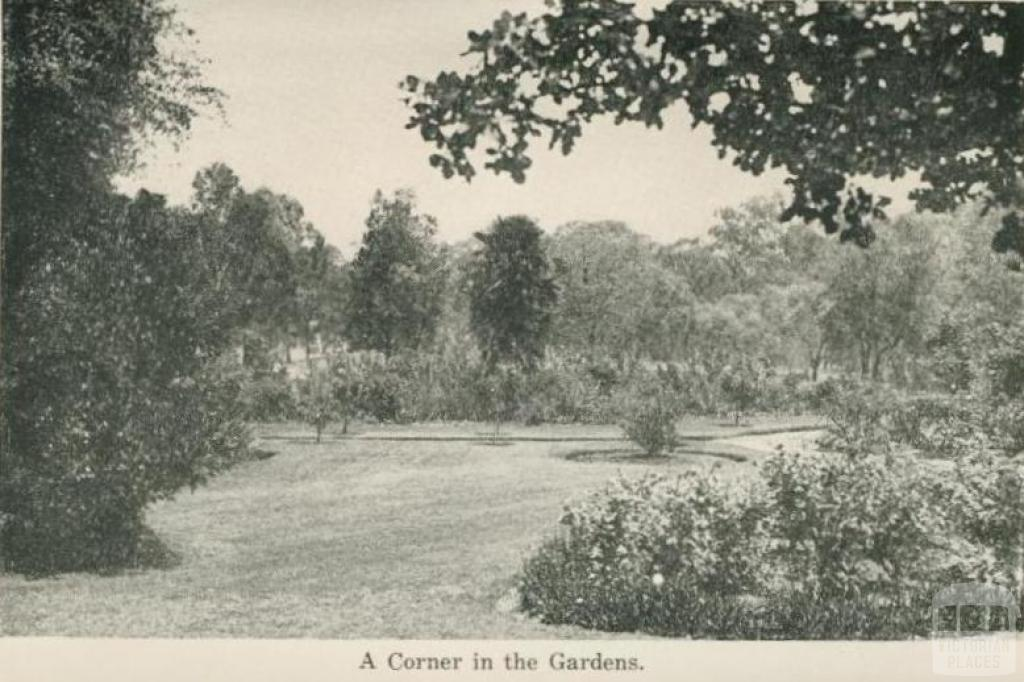 A corner in the Gardens, Echuca, 1955