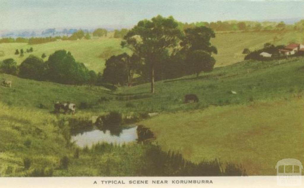 A typical scene near Korumburra
