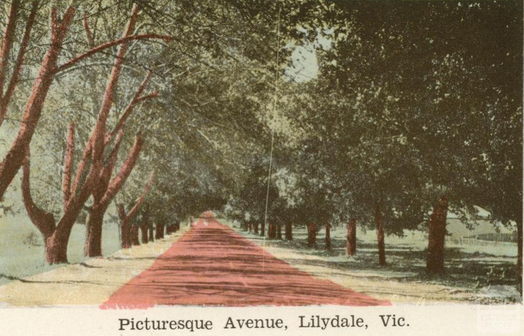 Picturesque Avenue, Lilydale, 1964