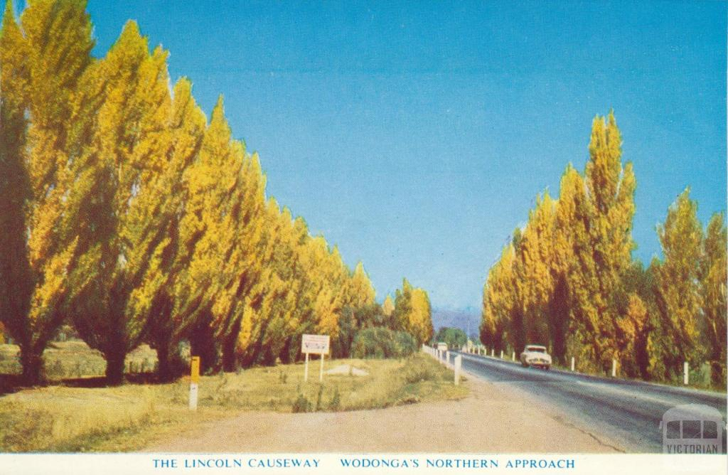The Lincoln Causeway, Wodonga's northern approach, 1965
