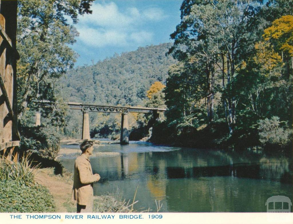 Thompson River Railway Bridge, Walhalla